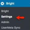 Debugging Bright For WordPress