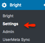 Debugging Bright For WordPress