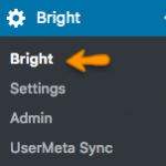 How to Access SCORMCloud Reportage Straight From Bright